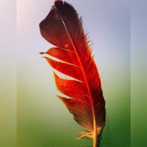 Healing Body Mind Spirit